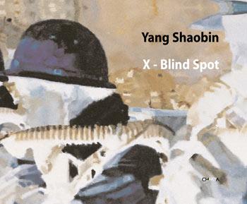 《杨少斌:X-后视盲区》